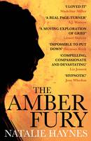 Cover for The Amber Fury by Natalie Haynes