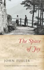 Cover for The Space of Joy by John Fuller