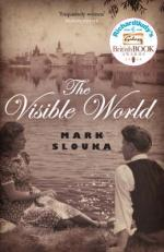 Cover for The Visible World by Mark Slouka
