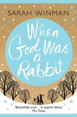 Cover for When God Was a Rabbit by Sarah Winman