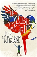 Book Cover for The Possible World by Liese O'Halloran Schwarz