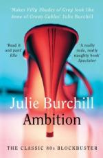 Cover for Ambition by Julie Burchill