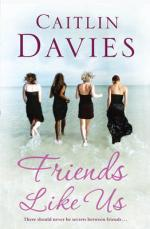 Cover for Friends Like Us by Caitlin Davies