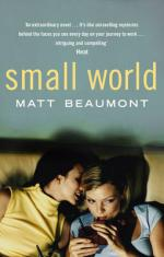 Cover for Small World by Matt Beaumont