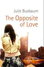 Cover for The Opposite of Love by Julie Buxbaum